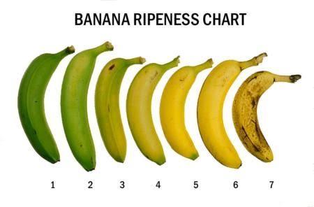 Obr. 1 Stupne zrelosti banána, zdroj: http://www.sarahkayhoffman.com/